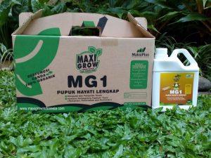 Maxigrow